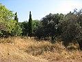 Rhodes, Greece - panoramio (76).jpg