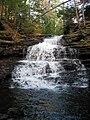 Ricketts Glen State Park Onondaga Falls 7.jpg