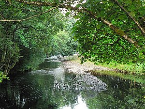 English: River Add through the trees