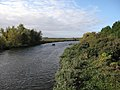 River Great Ouse - geograph.org.uk - 1553914.jpg