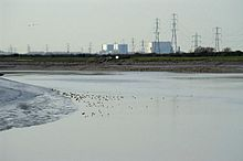 River flowing around a bend with a muddy bank on the left. Beyond the river are white concrete block buildings and multiple electricity pylons.