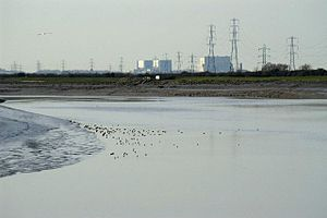 River Parrett - The river near Pawlett showing Hinkley Point power stations A and B
