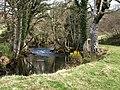 River Teign below Dogmarsh Bridge - geograph.org.uk - 1243039.jpg