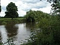 River Wye - geograph.org.uk - 1419319.jpg