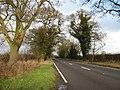 Road To Hodnet - geograph.org.uk - 657941.jpg