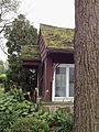 Rodale Farm Bakeoven edge & old farm tree.jpg