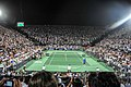 Roger Federer and Juan Martin del Potro (8366843595).jpg