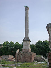Bizans İmparatoru Fokas için, 608 yılında dikillmiştir: Roma Forumu'na yapılan son eklentidir.