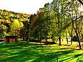 Row Of Trees - panoramio.jpg
