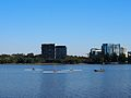 Rowers on LBG January 2013.jpg
