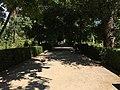 Royal Botanical Garden in Madrid 07.jpg