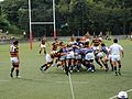 Rugby Keio University vs Doshisha University.JPG