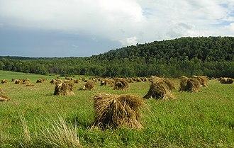 Steuben County, New York - Image: Rural Stebuen County New York