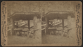 Rustic seat, Ross Park, by George N. Cobb.png