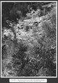 SBB Historic - F 115 00004 016 - Gruonbach bei Flüelen, Gruoneck unterste Talsperre.tiff