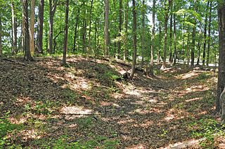 Skiffes Creek Sand Spit Site archaeological site in Virginia, USA