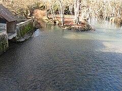 Saint-Germain-des-Prés (Loiret) - 04.jpg