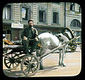 Saint Petersburg street scene, man with a horse-drawn cart.jpg