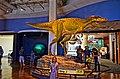 San Diego Natural History Museum (19716473591).jpg