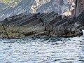 Scandola Nature Reserve in Corsica in France - 2013-09-25 F.jpg