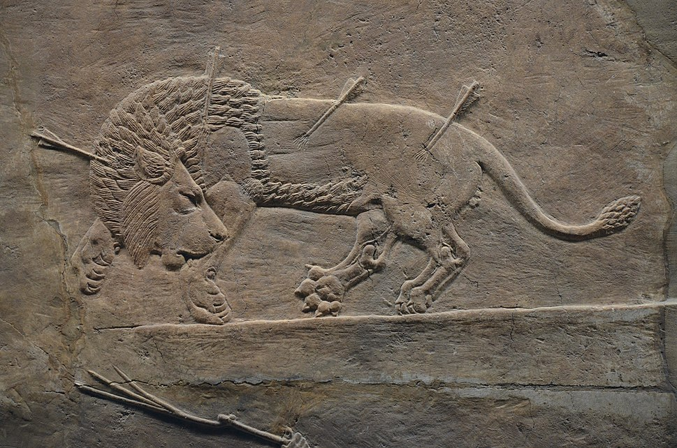 Sculpted reliefs depicting Ashurbanipal, the last great Assyrian king, hunting lions, gypsum hall relief from the North Palace of Nineveh (Irak), c. 645-635 BC, British Museum (16101120334)