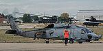 Seahawk (5082861243).jpg
