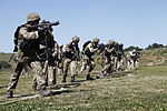 Security Force Marines conduct trilateral exercise during Lisa Azul 150310-M-XZ244-491.jpg