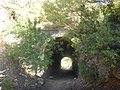 Sendero-embalse-de-Bornos P1420634.jpg