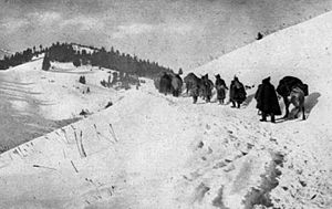 Serbian retreat through Albanian mountains, 1915.jpg