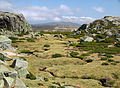 Serra da Estrela - 6.jpg