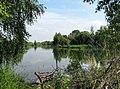 Shchyokino Pond IMG 3530 1280.jpg