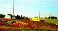 Shopko Hometown - panoramio.jpg
