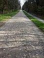Siedenholzbahn-20210506-04.JPG
