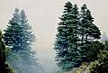Sierra de las Nieves 1975 02.jpg