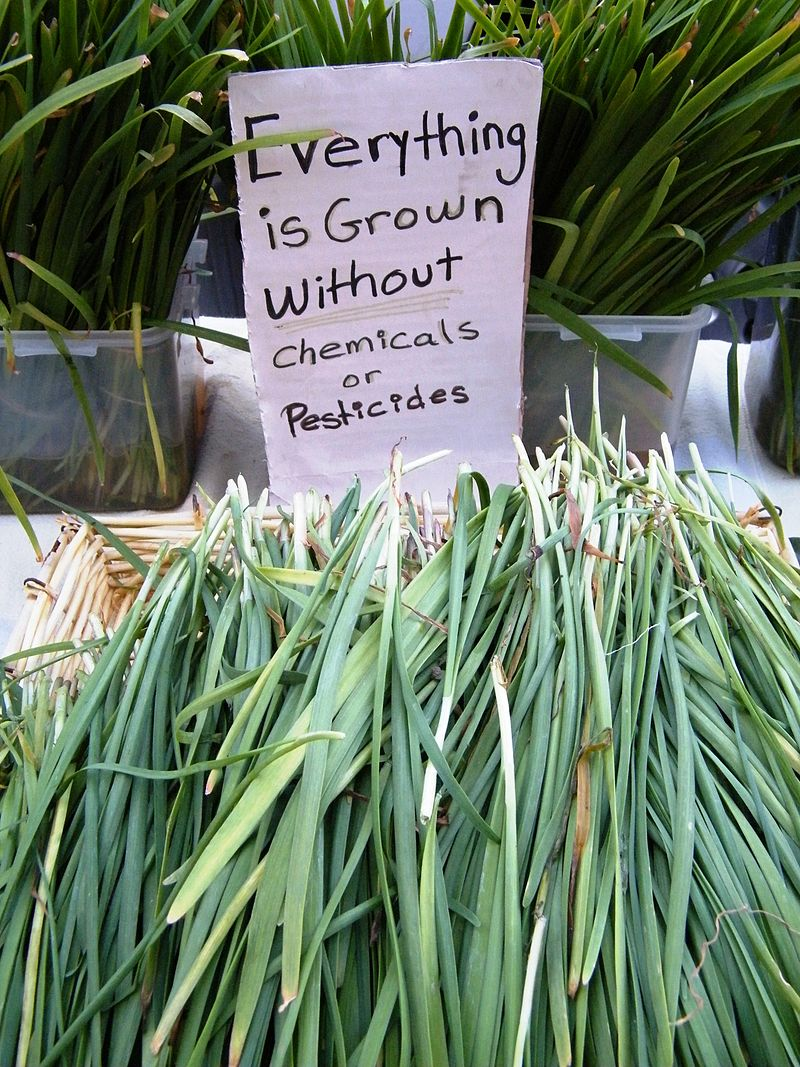 Sign at the Sonoma Farmers market - Stierch.jpg