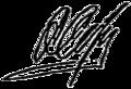 Signature of Anatoly Serdyukov.png