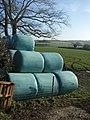 Silage bales at Plusha - geograph.org.uk - 639404.jpg
