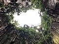 Sky view of batu caves.jpg