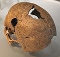 Smac Neolithikum 102.jpg