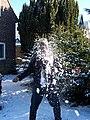 Snowball-effect.jpg