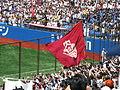 Sokeisen spring 2008 - Waseda University flag.JPG