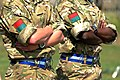 Soldiers of Different Ethnicity Serving Together MOD 45153022.jpg