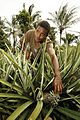 Solomon Islands (10721559996).jpg