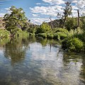 South Fork John Day Wild and Scenic River (36265630392).jpg