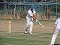 Southwater CC v. Chichester Priory Park CC at Southwater, West Sussex, England 007.jpg