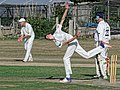 Southwater CC v. Chichester Priory Park CC at Southwater, West Sussex, England 079.jpg