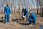 Soyuz TMA-20M crew during the tree planting ceremony.jpg