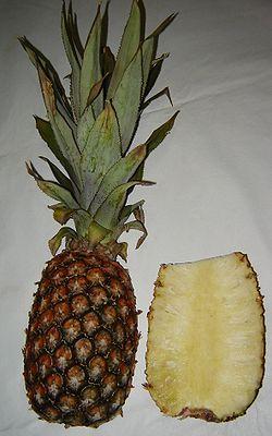 Fruto do abacaxi (exterior e corte)
