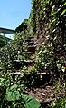 Stairway to Heaven (5812627197).jpg
