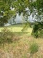 Standing Stone, Gownieburn - geograph.org.uk - 257700.jpg